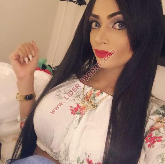 Novedad hermosa latina. -