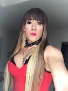 Trans latina XXL
